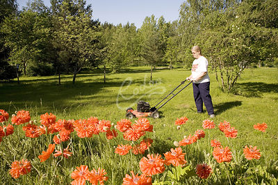 Senior woman cutting grass