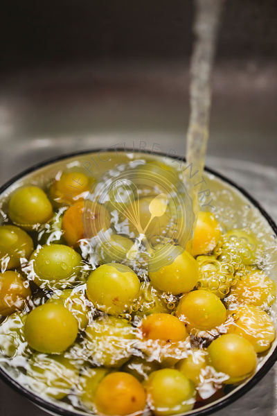 Green plums being washed in a kitchen sink