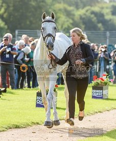 Jonelle Price and FAERIE DIANIMO at the trot up, Land Rover Burghley Horse Trials 2019