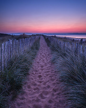 Early morning twilight looking along path through sand dunes towards Exmouth, Dawlish Warren, Devon, UK