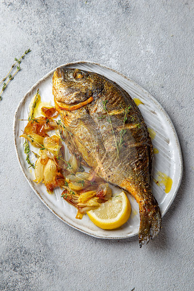 Grilled sea bream or dorada on gray plate. Gray background