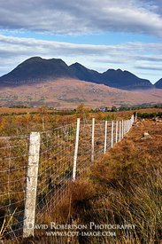 Image - Deer fence to protect natural regeneration of native trees, Torridon, Wester Ross, Highland, Scotland.  View to Beinn...