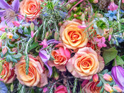 Roses and mixed flowers