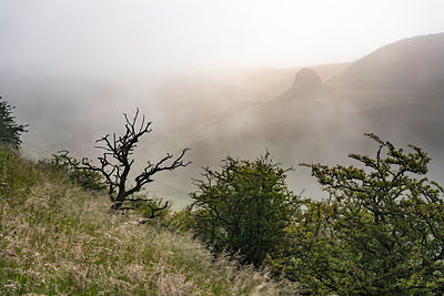 June morning in Cressbrook Dale | Peak District Photography