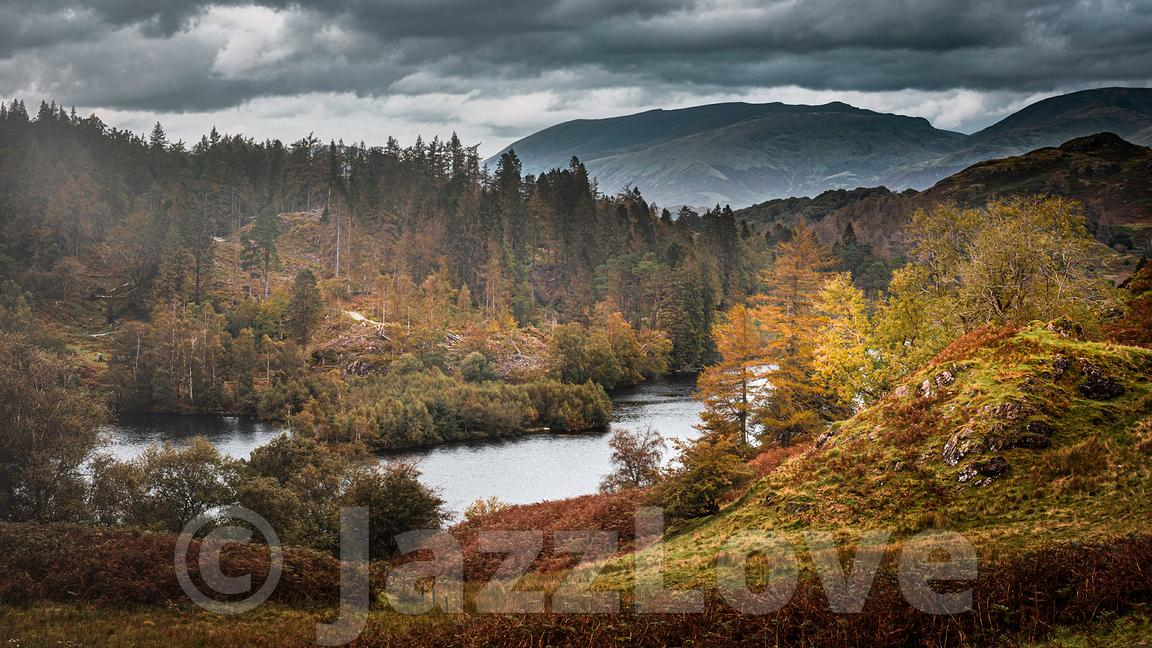 Tarn Hows in autumn.Painterly landscape scene in Lake District, Cumbria,UK