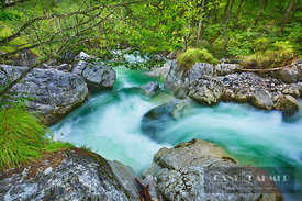 Brook in deciduous forest - Europe, Germany, Bavaria, Upper Bavaria, Berchtesgadener Land, Ramsau, Ramsauer Ache (Alps, Berch...