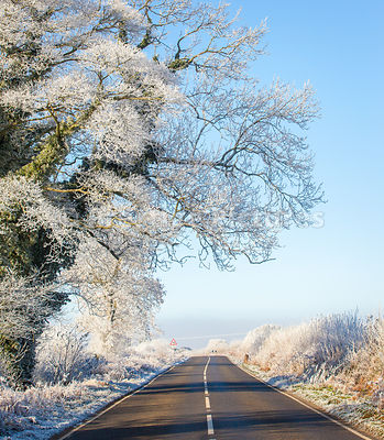 Frost covered trees on Empty Country Road on a Frosty Morning