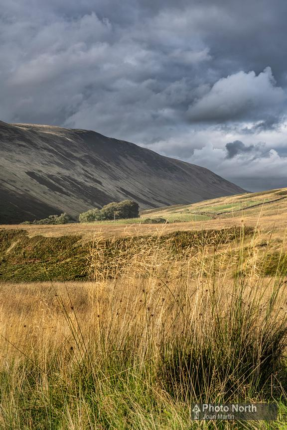 BARBON 51B - Evening sun on the Barbondale Fells