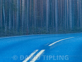 Forest road near Oulu finland