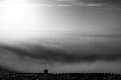 Champagne-Galerie-brume-7073