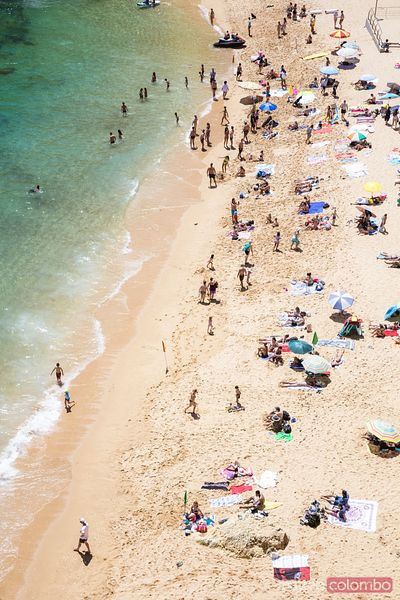 Aerial of beach crowded in summer, Algarve, Portugal