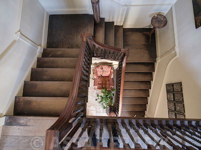 Wooden staircase in house