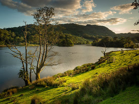 Rydal Evenings