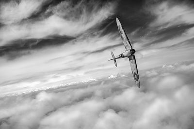Freedom: Spitfire solo black and white version