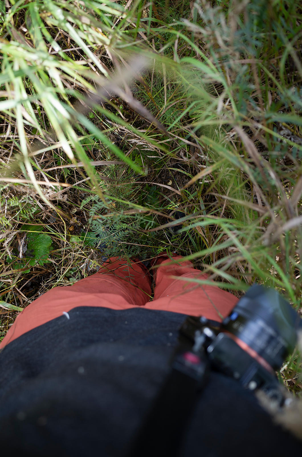 At times the trail went through grass higher than me. Without map one wouldn't know of any path.
