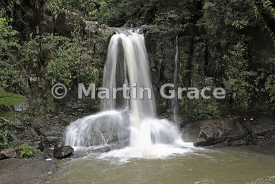 Waiau Falls in luxuriant indigenous woodland, Coromandel Peninsula, North Island, New Zealand