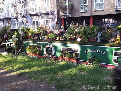 2015-06-25 19.07.13 Flowers cover a barge on the Regents Canal, Hackney, London.