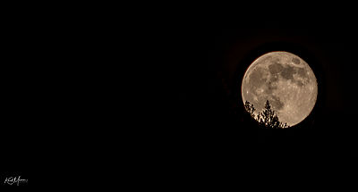 The_Moon_14-2020040840