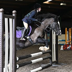15/03/2020 - Class 5 - Unaffiliated showjumping - Brook Farm training centre - UK