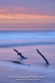 Image - St. Cyrus Beach, Aberdeenshire, Scotland at sunrise