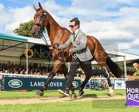 Dominic Schramm and BOLYTAIR B at the trot up, Land Rover Burghley Horse Trials 2019