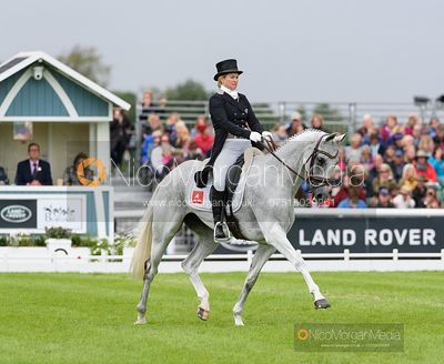 Jonelle Price and FAERIE DIANIMO - Dressage - Land Rover Burghley Horse Trials 2019