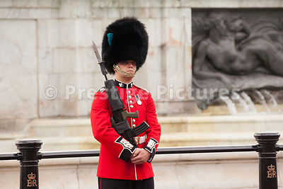Irish Guardsman on  Street Lining duty around Buckingham Palace