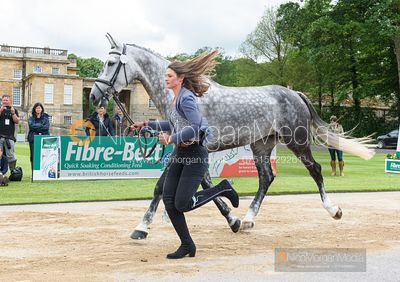 Sophie Jenman and LORDANA VH LEYSEHOF Z at the trot up, Equitrek Bramham Horse Trials 2019
