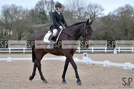 Unaffiliated dressage. Brook Farm Training Centre. Essex. UK. 26/01/2019. ~ MANDATORY Credit Garry Bowden/Sportinpictures - N...