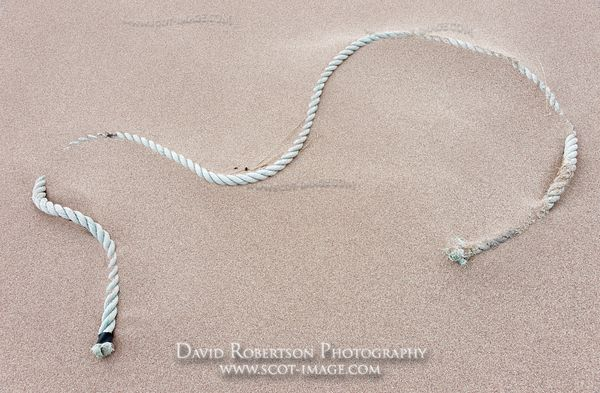 Image - Piece of old rope lying on a sandy beach