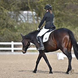 14/02/2020 - Class 4 - British dressage - Brook Farm training centre - UK