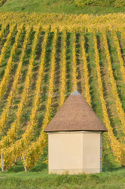 A traditional workers hut at a vineyard close to the village of Chateau-Chalon in the commune Jura department Franche-Comté, ...