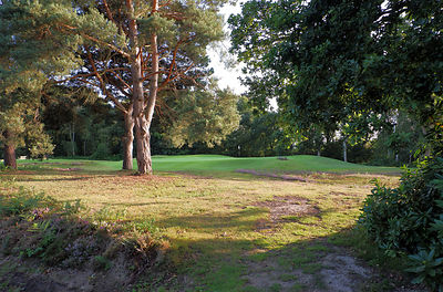 Piltdown Golf Club Founded 1904