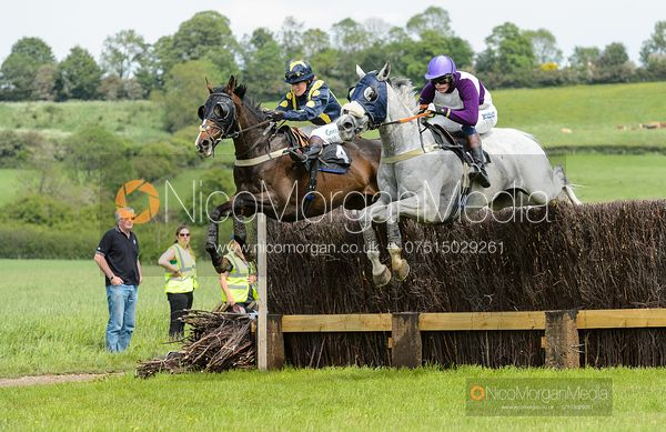 BEGGAR'S VELVET (Amy Cox) - Race 2 - Conditions race - The Fitzwilliam at Dingley