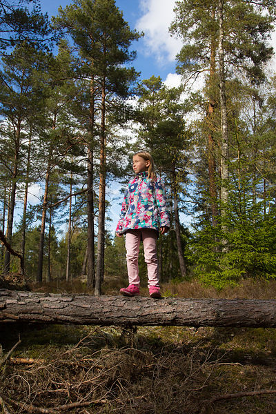 Lapsi metsässä.|||Girl in the forest.