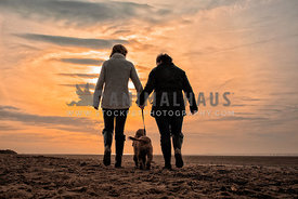 couple walk dog on beach