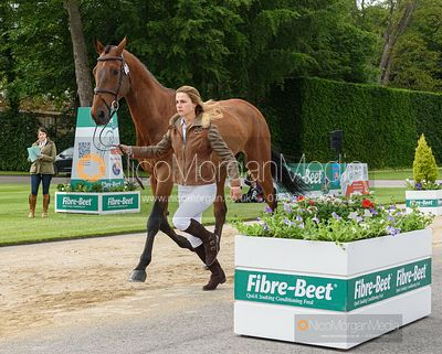 Constance Copestake and DENVER VI at the trot up, Equitrek Bramham Horse Trials 2019