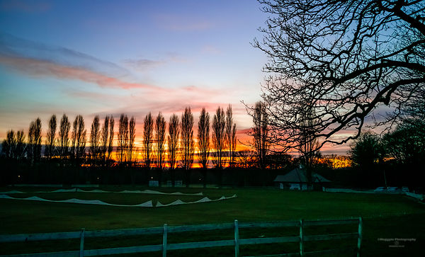 Sunset at Sefton Park Cricket Club