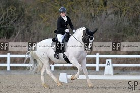 British dressage. Brook Farm Training Centre. Essex. UK. 02/03/2019. ~ MANDATORY Credit Garry Bowden/Sportinpictures - NO UNA...