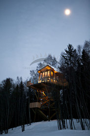 Treetop Luxury