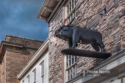 KENDAL 41A - The Bristling Hog