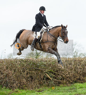 David Pease jumping a hedge near Leicester Lane. The Cottesmore and Fernie Hunts at Hill Top 10/12