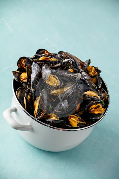 Pot full of steamed mussels on blue background