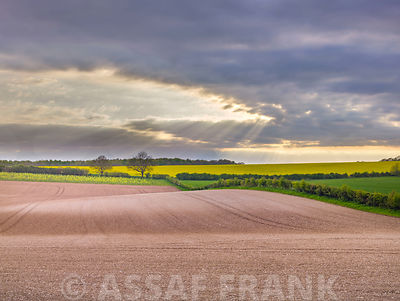 Farm fields in Hampshire during spring