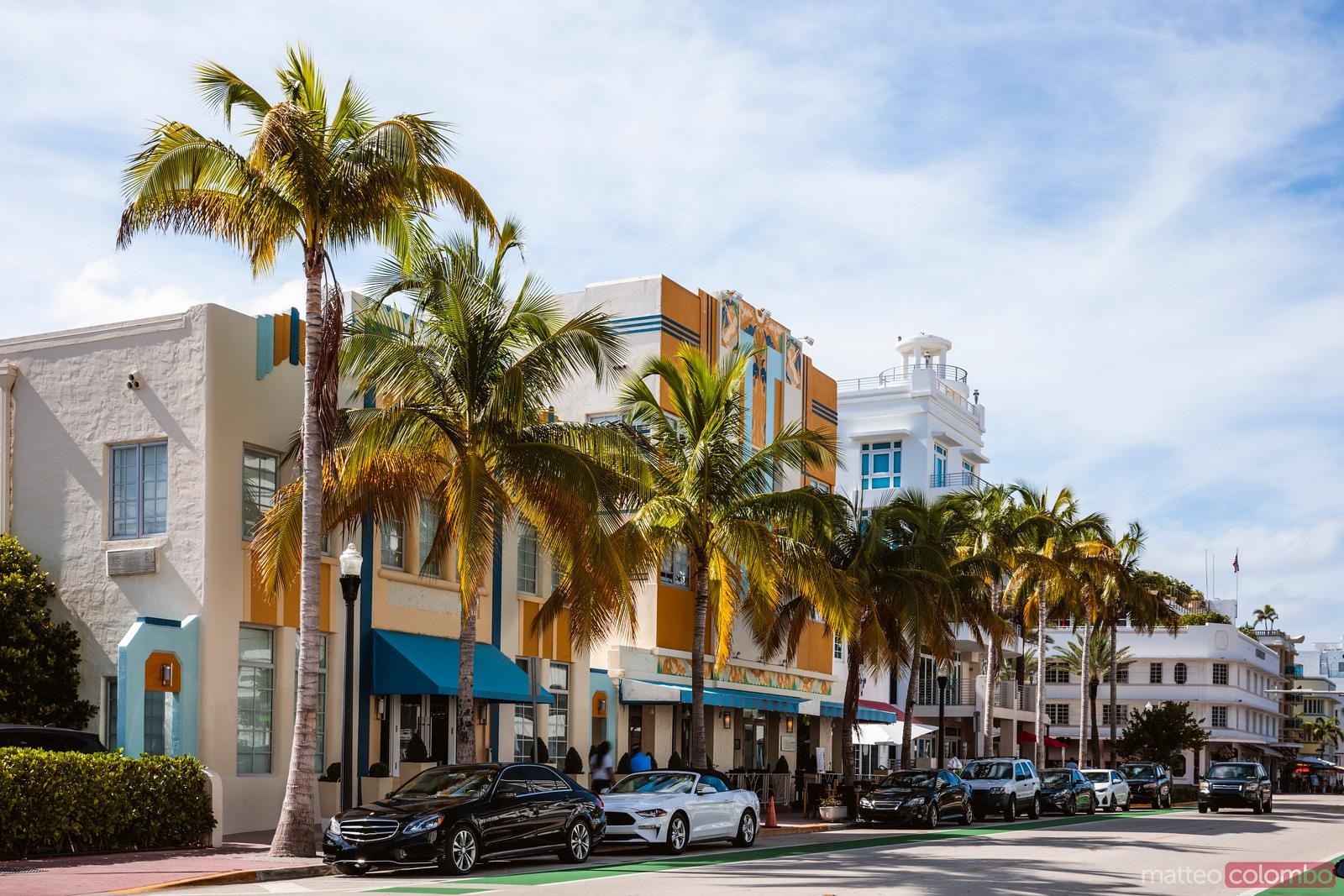 Palm lined Ocean Drive, Miami, Florida, United States
