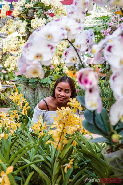 Asian woman surrounded by orchids, Chiang Mai, Thailand