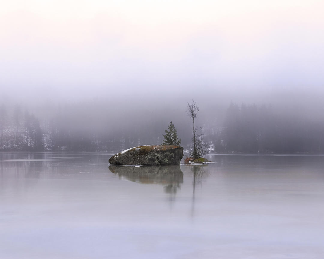 Rock and trees in foggy,, rainy, frozen lake