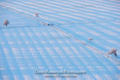 Image - Fenced fields in snow showing old runrigs