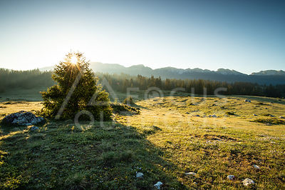 bivouac-darbounouse-HD_FOCUS-OUTDOOR-0003