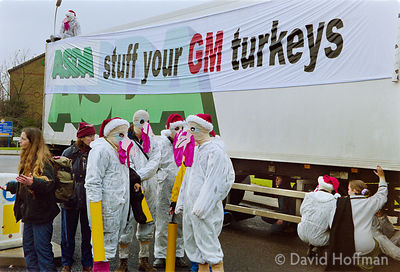 00121905-18b Protesters from the Snowball & the GenetiX anti GM food movement chain themselves to delivery trucks during a bl...
